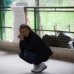 FIHP pattinaggio freestyle acquario Antonella Carpanese perplessa
