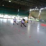UISP pattinaggio preparazione atleti  Farulli Berti  Acquario