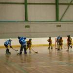 Piranha Hockey Acquario vs Lions attacco