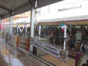 Pioggia  al Campionato di Pattinaggio 2014