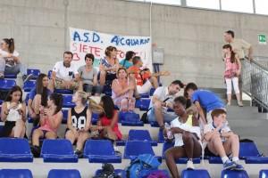 Aversa2015- Acquario Tifosi