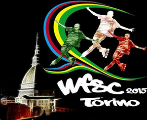 WFSC 2015 TORINO